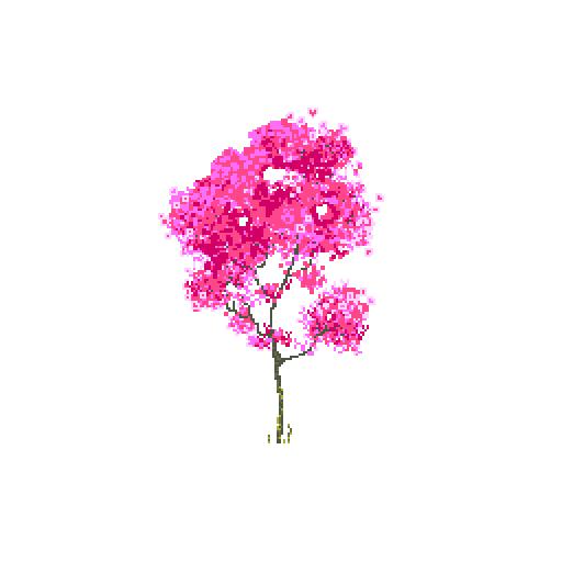 flore_magnolia.png