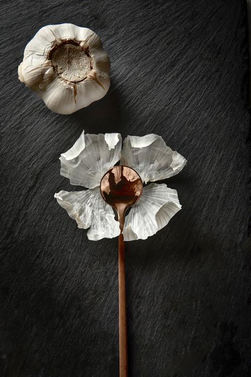 Copy of 190520 Garlic2172.jpg