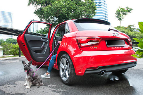 AUDI-SINGAPORE-AUDI-A114.jpg
