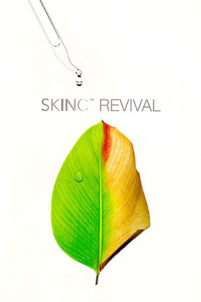 skin-inc-01.jpg