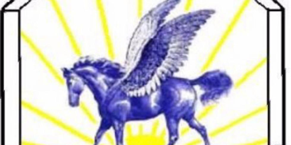 Blue Angel Dressage Show I and II