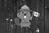 CanadaDay-Web-Adv.jpg