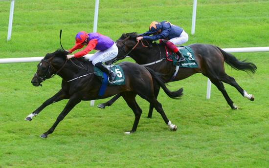 ROMANISED Minstrel Stakes 2019-scoopdyga