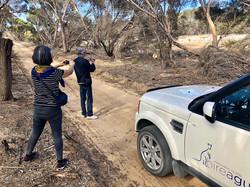 day trip to kangaroo island