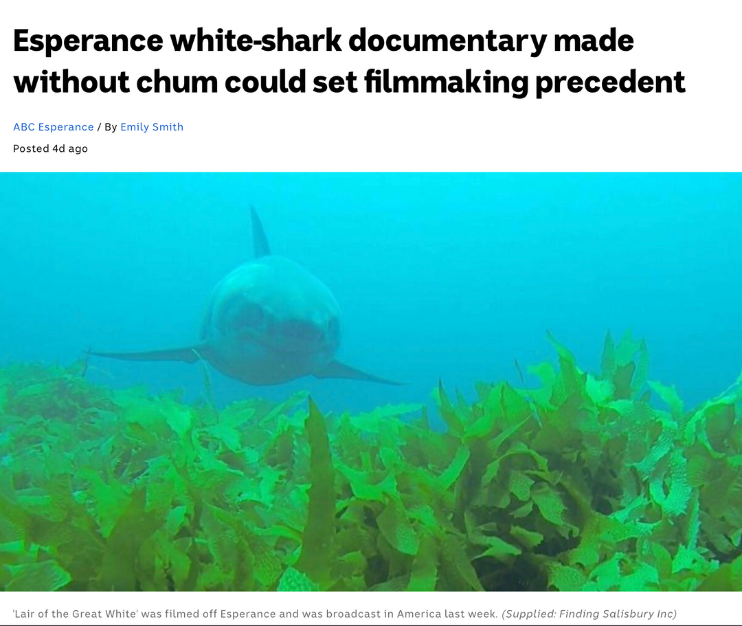 "Terra Australis feature in ""Lair of the Great White' on Discovery Shark Week 2020"