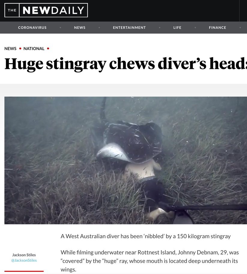 Terra Australis makes world headlines after incredible interaction with Giant Stiingray