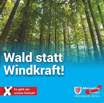 2-1-1_Wald statt Windkraft.png