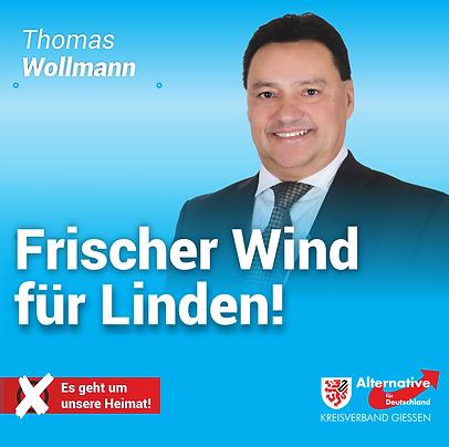 2-1-1_Wollmann.png