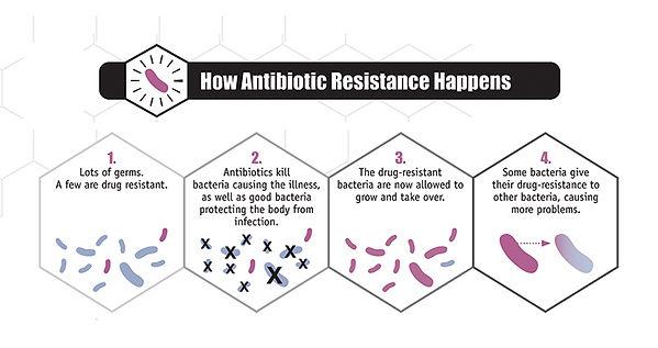 2-How-Antibiotic-Resistence-Happens.jpg