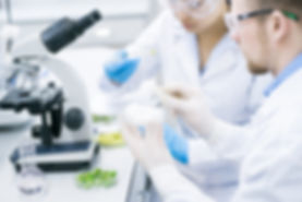 microbiologists-surveying-properties-of-