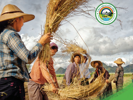 Myanmar Agriculture Development Strategy and Investment Plan (2018-19 to 2022-23)