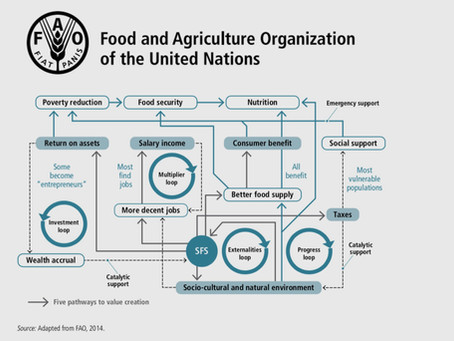 Sustainable Food Systems, Concept and Framework by FAO, United Nations