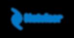 netvisor-logo-blue-transparent (1).png