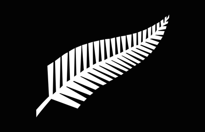 1000px-silver_fern_flag.svg.png