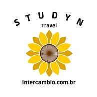 logo INTERCAMBIO studyn 2021 girassol (1