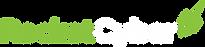 presentation_logo_transp_625.png