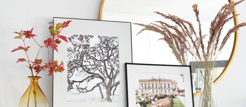"Insider Tip: Inexpensive Sameday 11x14"" & 8x10"" Prints"