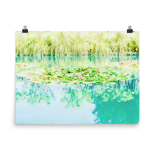 "Sonoma Water Lilies    18x24"" Print"
