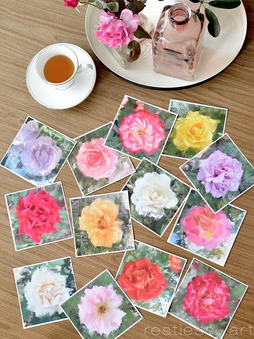 Sketched Summer Roses | Square Set