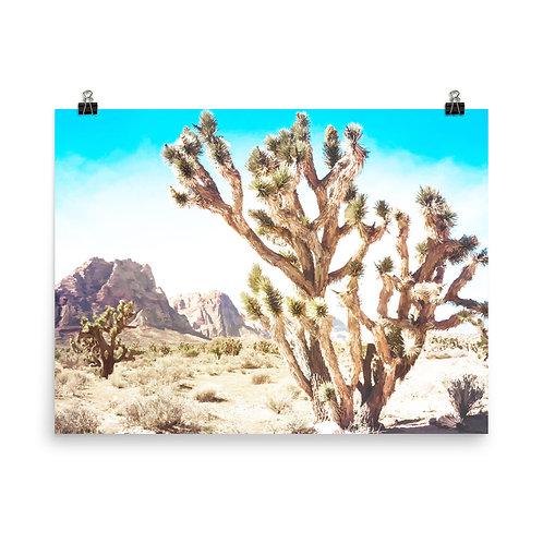"Joshua Tree    18x24"" Print"