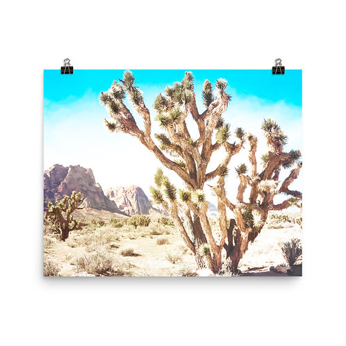 "Joshua Tree   16x20"" Print"