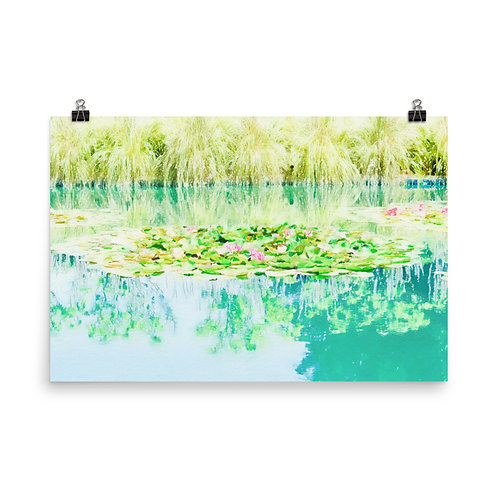 "Sonoma Water Lilies    24x36"" Print"
