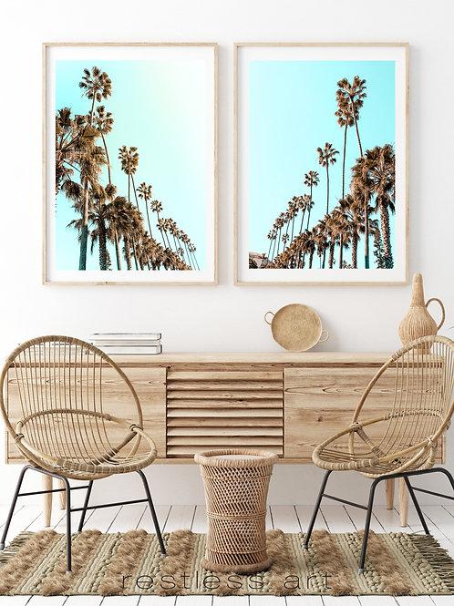 California Palms I & II