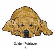 golden-5watermarked.jpg