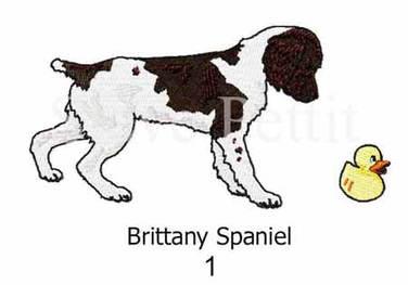 brittany-spaniel-1watermarked.jpg