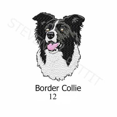 border-collie-12.jpg