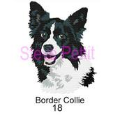 border-collie-18.jpg