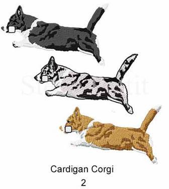 cardi-2watermarked.jpg