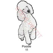 POODLE-11.jpg