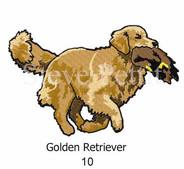 golden-10watermarked.jpg