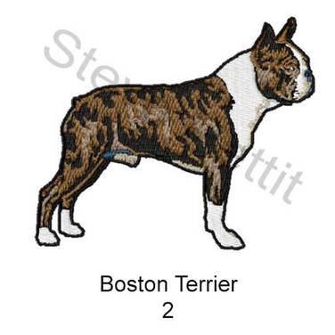 boston-terrier-2.jpg