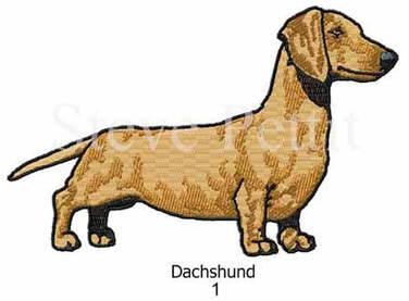 dachshund-1watermarked.jpg