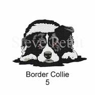 border-collie-5watermarked.jpg