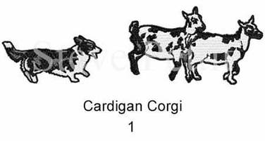 cardi-1watermarked.jpg