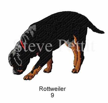 Rott-9watermarked.jpg