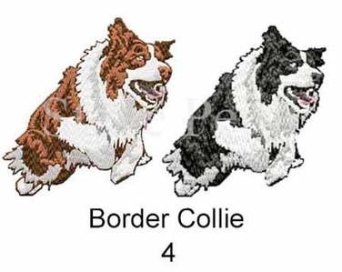 border-collie-4watermarked.jpg