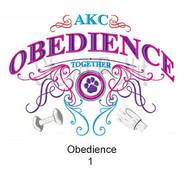 obedience-1.jpg