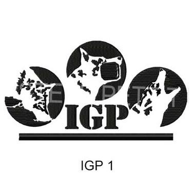 IGP-1.jpg