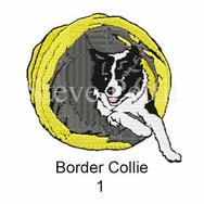 border-collie-1watermarked.jpg