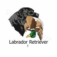 lab-5.jpg