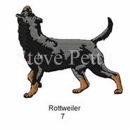 Rott-7watermarked.jpg