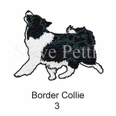 border-collie-3watermarked.jpg