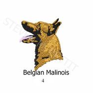 MALINOIS-4.jpg