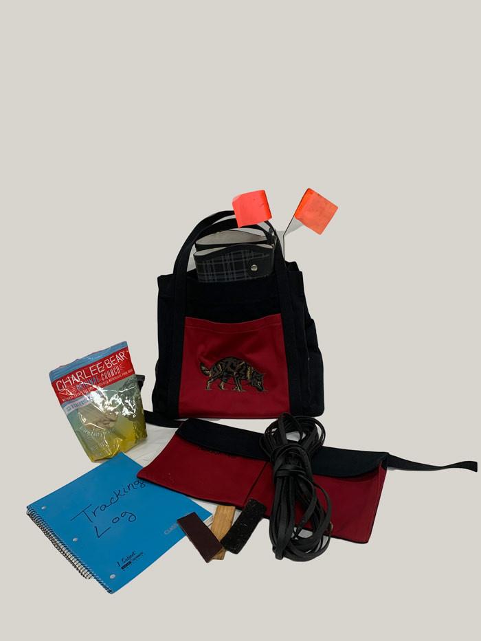tracking-bag-2.jpg
