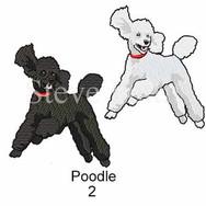 poodle-2watermarked.jpg