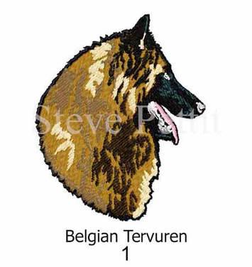 belgian-terv-1watermarked.jpg